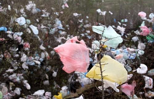 Les sacs plastiques un vrai fléau au Sénégal uù on t'emballe même un cube jumbo!!